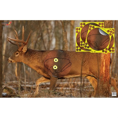 "Eze-Scorer 23""x35"" Whitetail Target with Shoot-N-C Overlay"